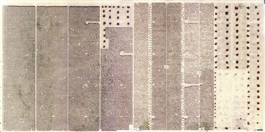 Marco Cadioli - Page #1 - 2013 - cm 100x50  digital print on Hahnemühle paper